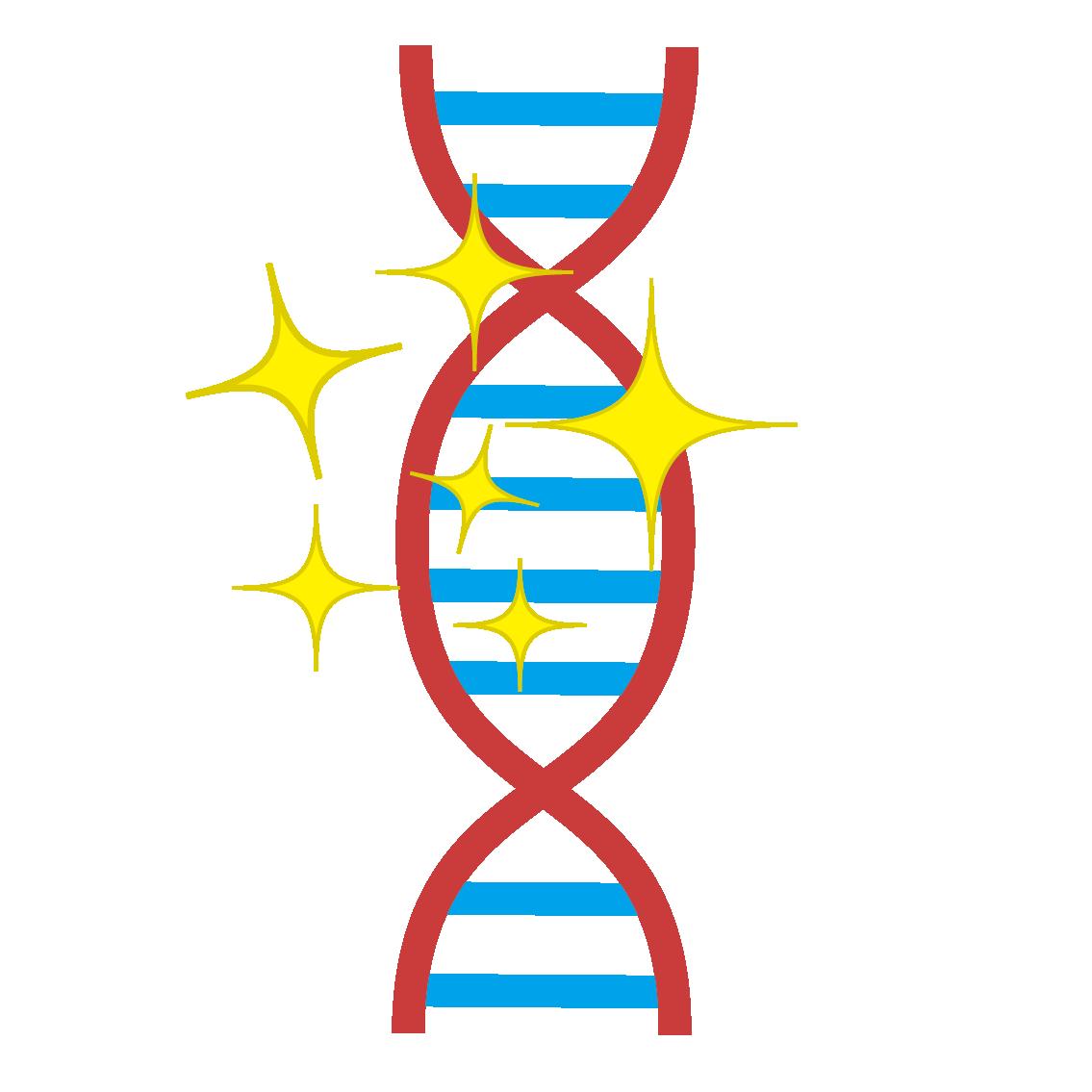 修復された遺伝子